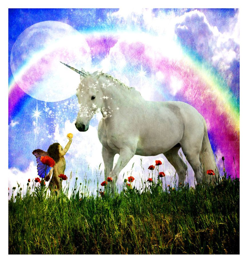 Unicorns And Fairies Real images of unico...