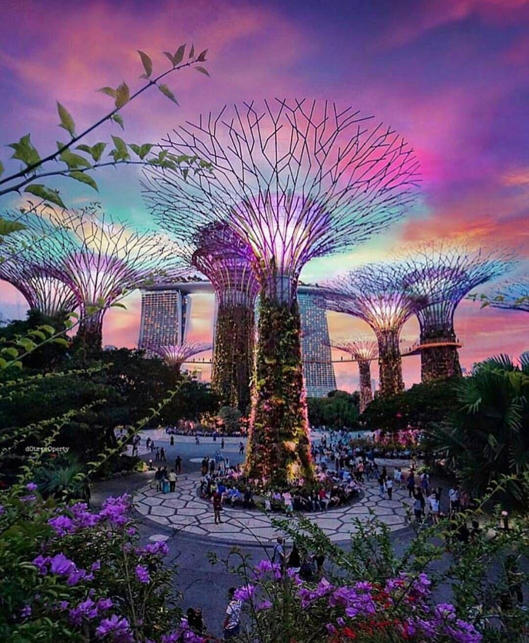 a5cbe93b4fba7fb478852b4aba75a262 - How To Visit Gardens By The Bay