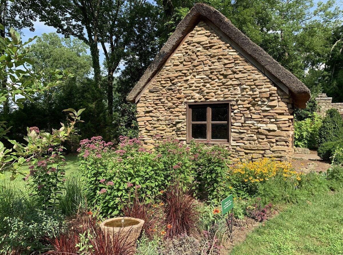 Easy Ways To Make Your Yard A Pretty Wildlife Habitat