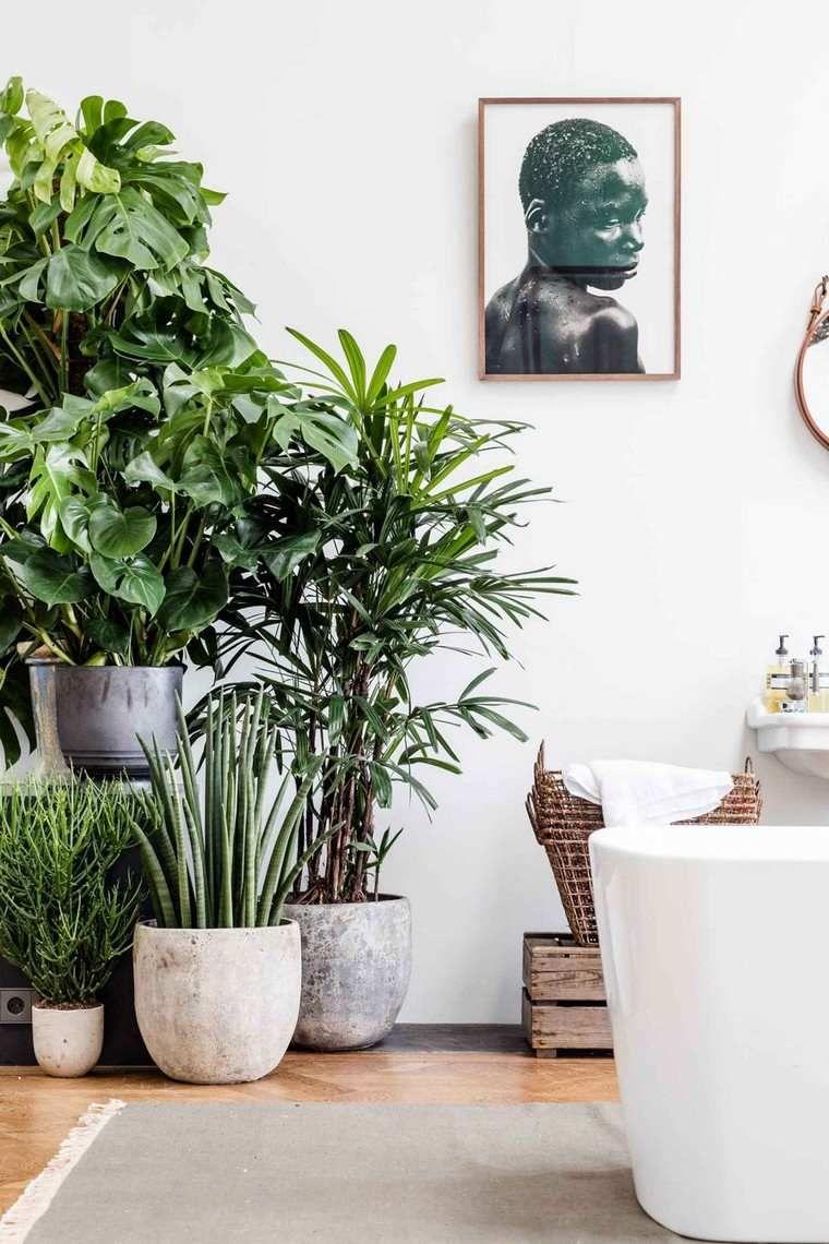 Idée Déco Salle De Bain Nature Pour Une Ambiance Zen Salle De - Plante verte pour salle de bain