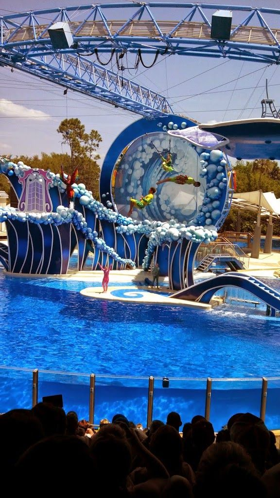 Sea World Orlando - Blue Horizons Dolphin Show