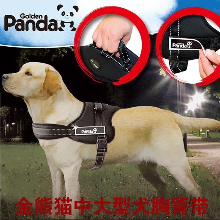 Seoproductname Acer Dog Harness Dog Leash