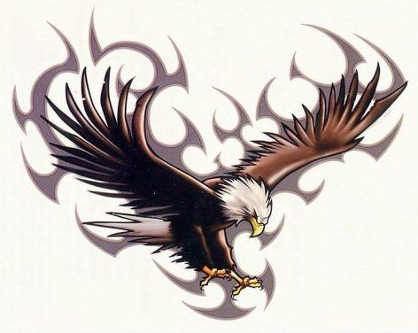 Meanings Of Eagle Tattoos Eagle Tattoos Tattoo Designs Picture Tattoos
