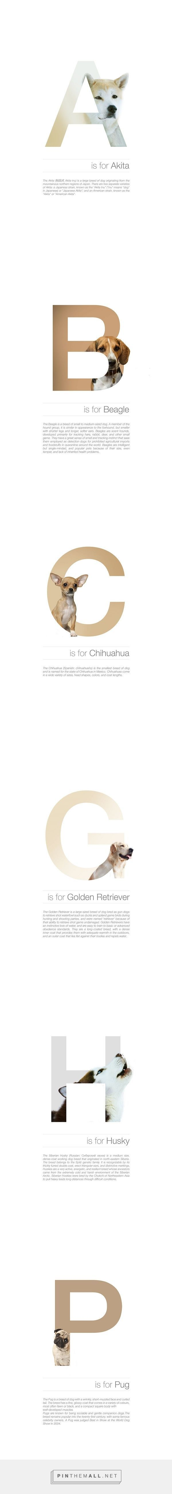 Designer matches letters of the alphabet with different dog breeds