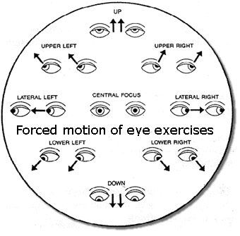 The Bates Method Is Not Eye Exercises Eye Exercises Eye Sight Improvement Vision Eye
