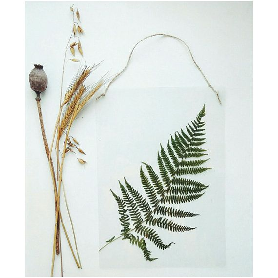 Fern wall hanging dried fern botanical wall hanging laminated pressed flowers green wall hanging natural wall