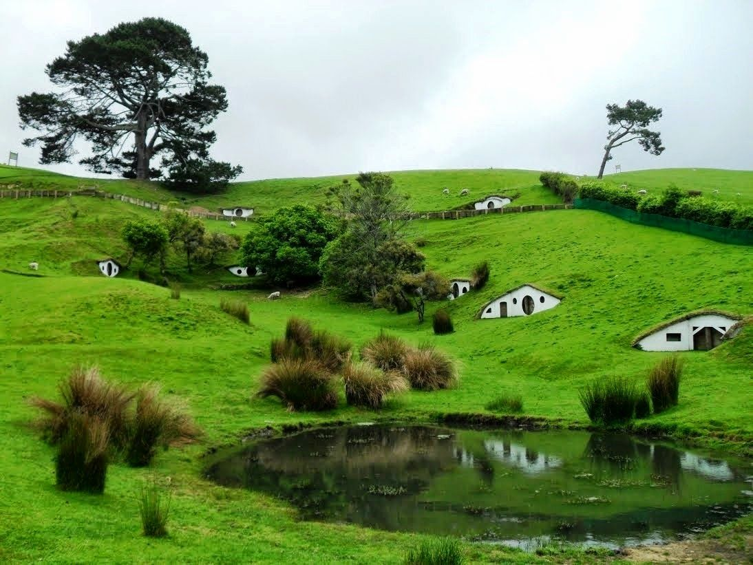 Remarkable Hobbit Home New Zealand Contemporary - Best idea home .