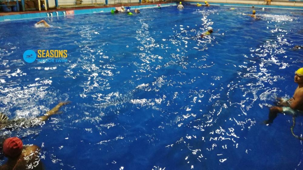 Seasons Indoor Swimming Pool Provide Temperature Controlled Indoor Swimming Pool Classes For Kids And Adults Swimming Classes Indoor Swimming Swimming Benefits