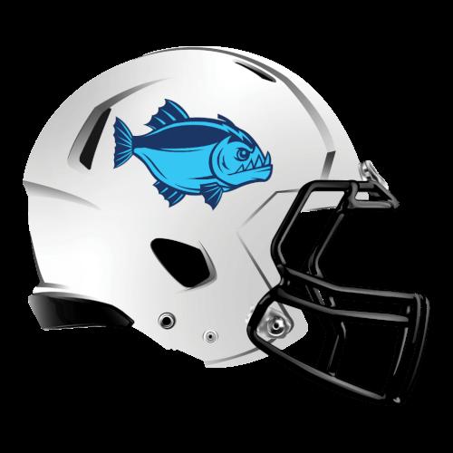 Pin on Fantasy Football Helmet Logos