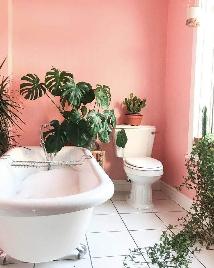 Photo of 18 Stunning Coral Rooms We Love