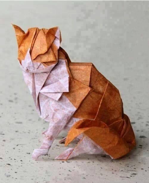 Gato de papel.