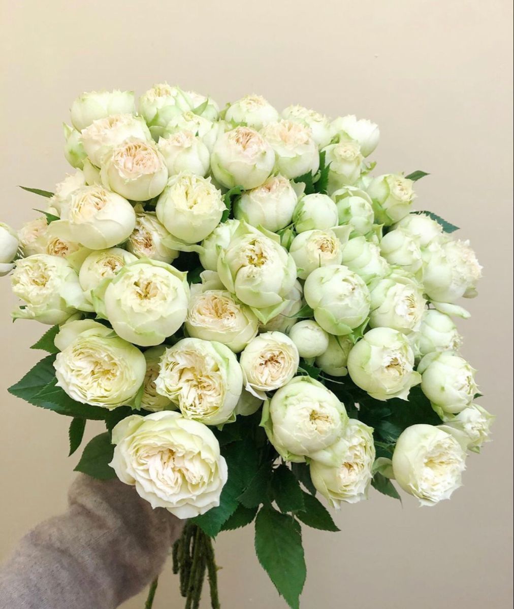 Eternal Rose Arrangement Roses That Last One Year Wholesale Decor Rose Arrangements Rose Centerpieces