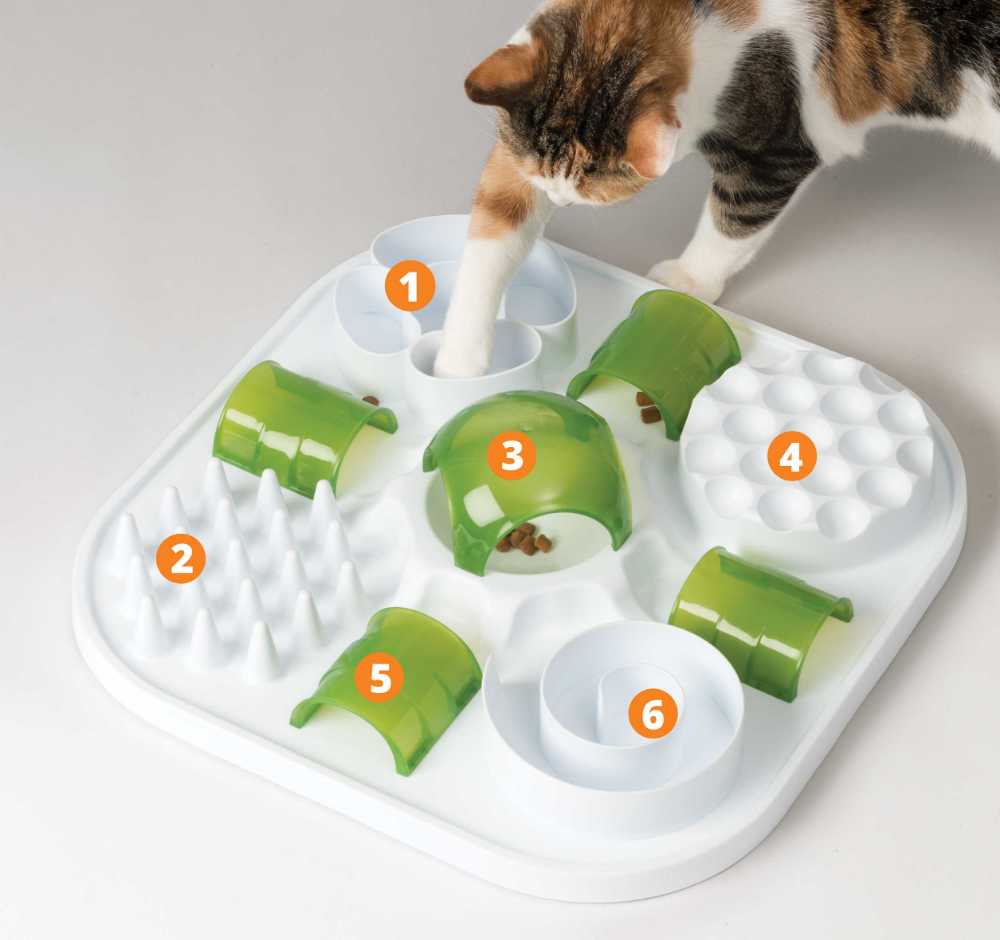 Treat Puzzle With Free Chicken Nibbly Fun Activities Catnip