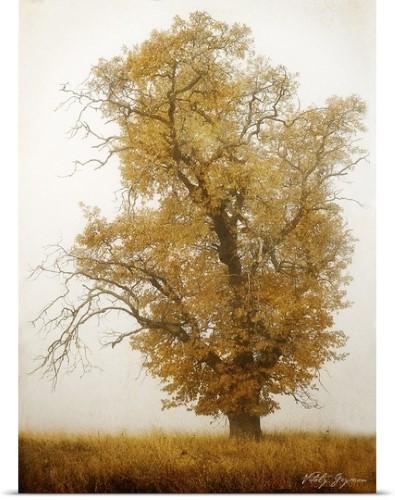 Vitaly Geyman Poster Print Wall Art Print entitled Autumn Mist I ...