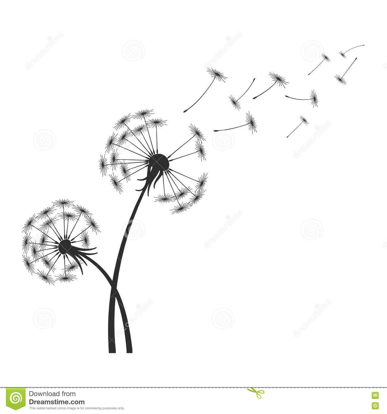 R sultat de recherche d 39 images pour dessin graine de - Dessin fleur pissenlit ...