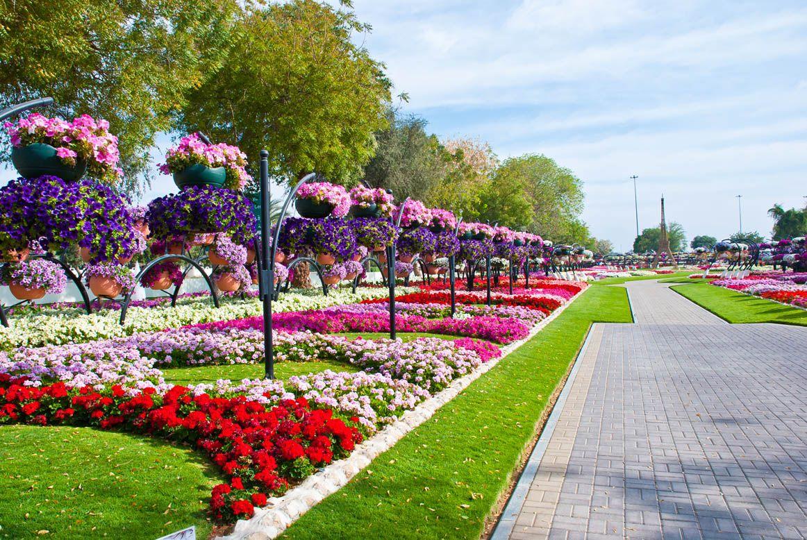 Al Ain Paradise Abu Dhabi Milano Giorno E Notte We Love You