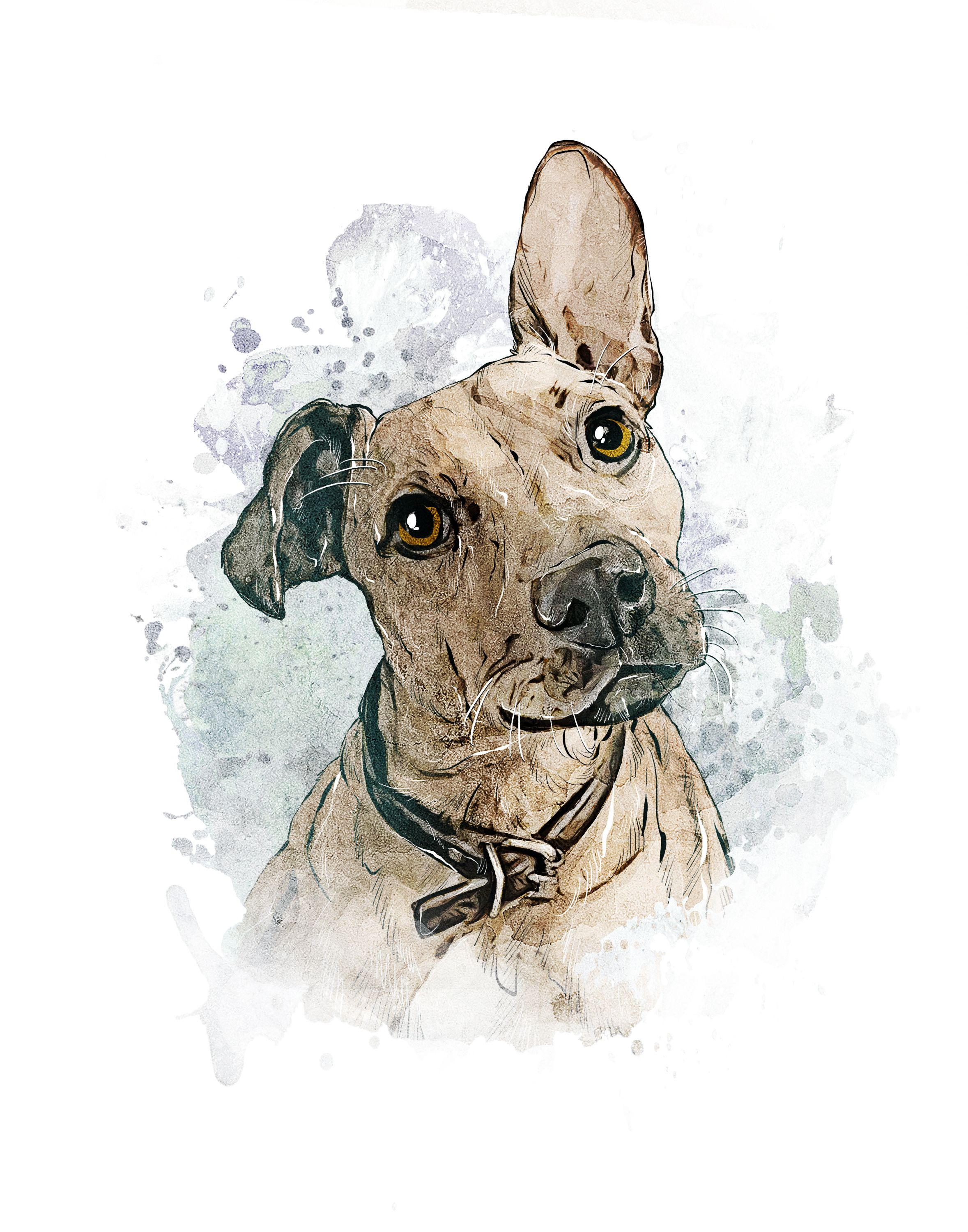 Custom Pet Portrait Watercolor Dog Painting Digital Pet Art Dog
