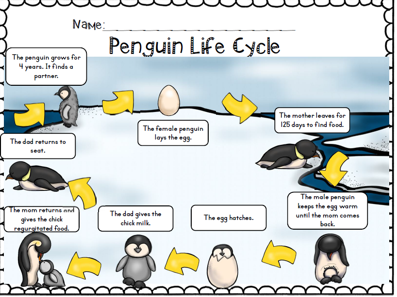 penguins non-fiction common core activity set | penguin ... little penguin diagram little giant wiring diagram for incubator #6