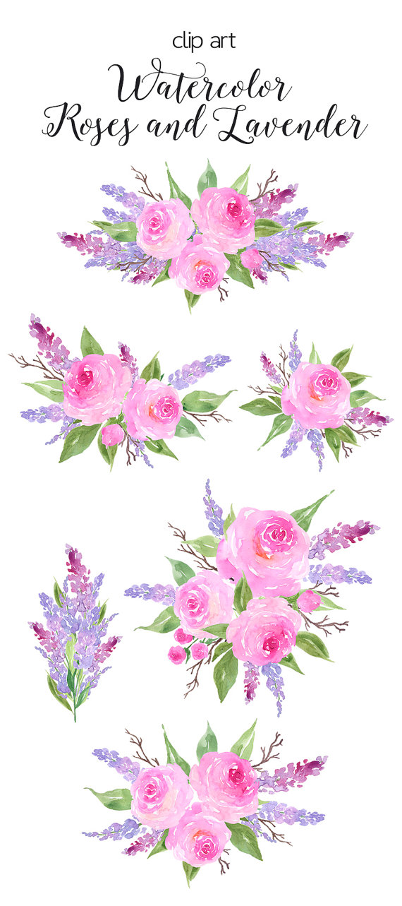 Watercolor flower clipart - Roses and Lavender Clip Art ...