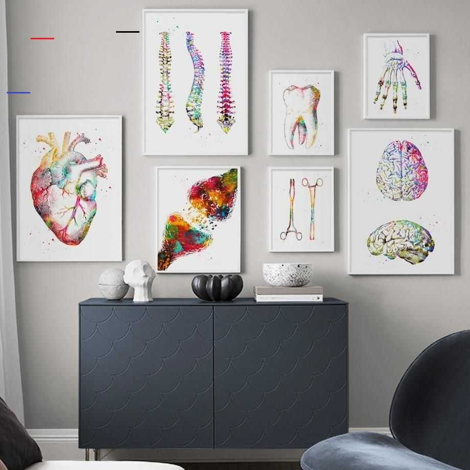 Anatomy Art Human Heart Brain Lungs Wall Art Canvas Painting Nordic Posters And Prints Wall P In 2020 Doctors Office Decor Wall Art Canvas Painting Minimalist Wall Art