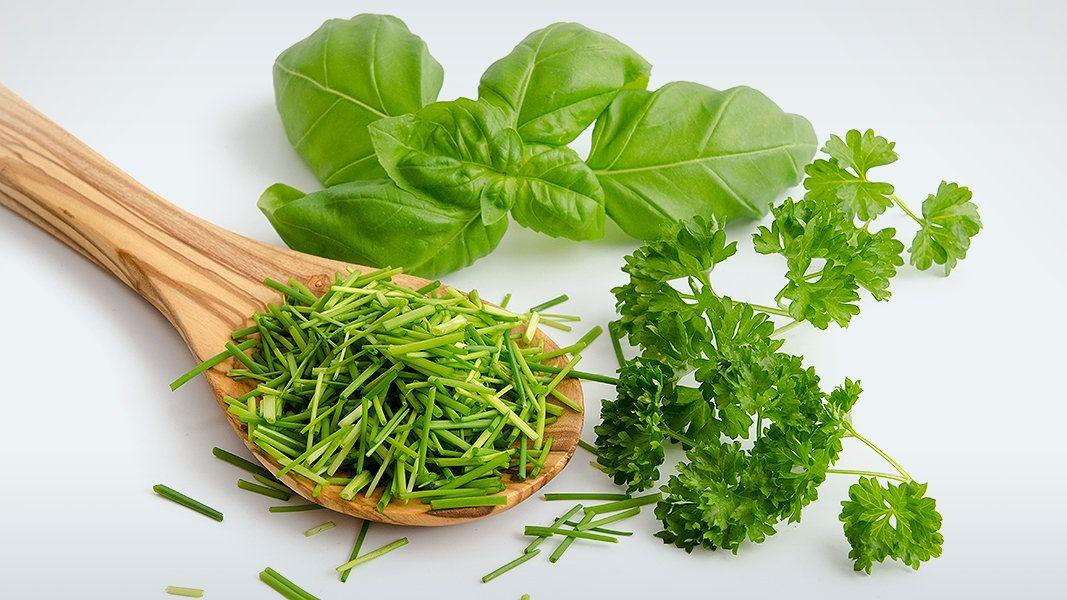Küchenposter Kräuter ~ In der küche werden kräuter wie basilikum petersilie und