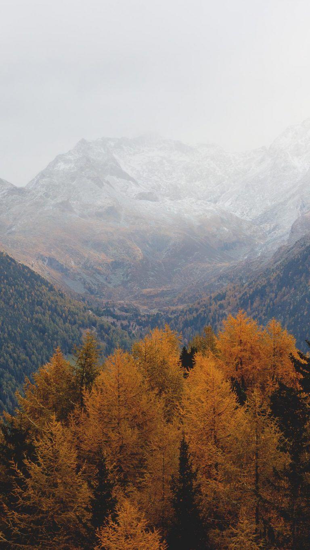 15 Fall Iphone Xs Wallpapers Best Autumn Backgrounds Landscape Wallpaper Landscape Background Live Wallpaper Iphone