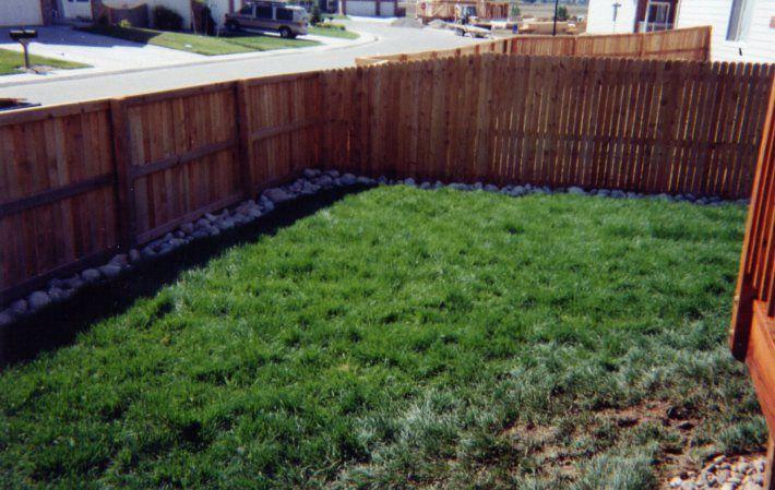 Fencing Solutions Dog Proof Fence Dog Yard Pet Fence