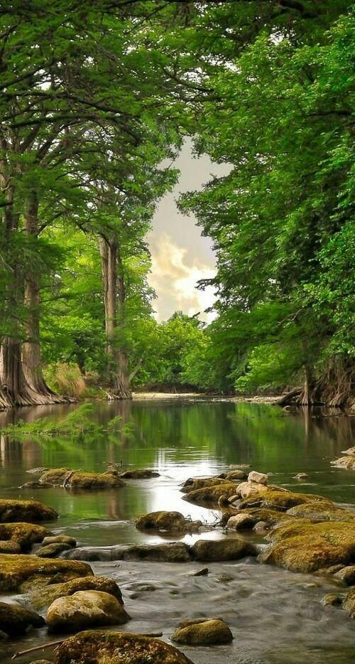 40 Romantic Waterscape Resources Landscape Is Fascinating Landscape Beautiful Landscapes Nature