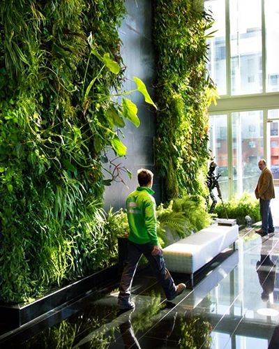 Living wall + Seat + Waterwall