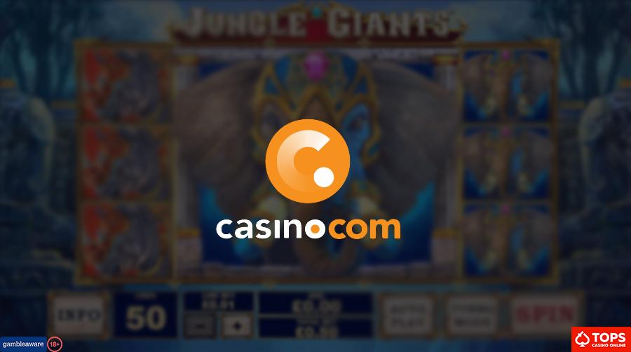 lotto system gewinn ausrechnen