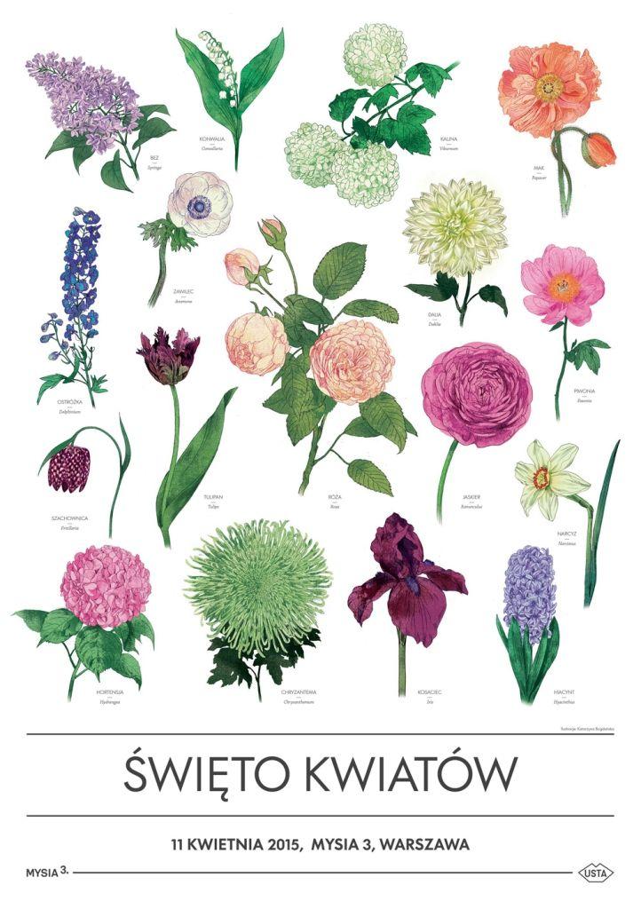 Plakat Kwiaty Poster Prints Wall Wallpaper Flower Pots