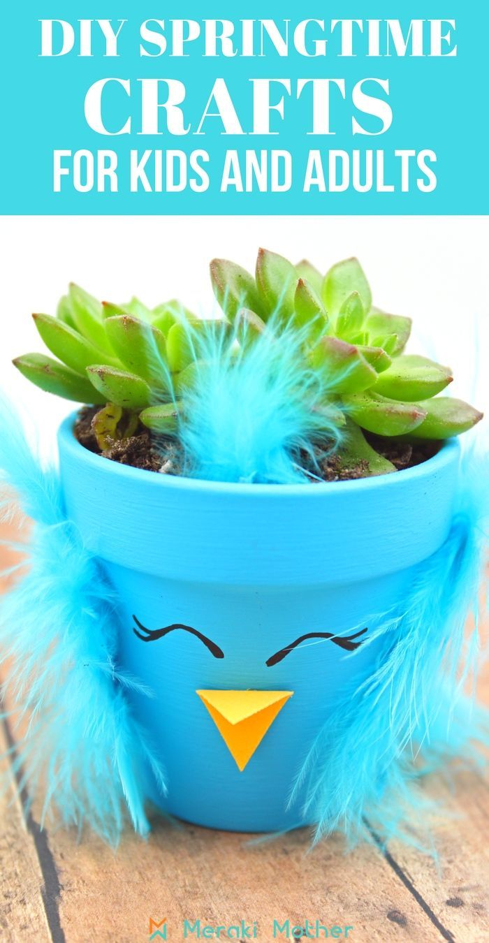 Spring Chick Succulent Planters Fun For Kids Spring Crafts
