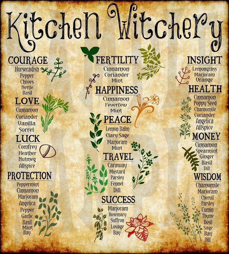 8x10 KITCHEN WITCH POSTER, Herbal Wall Art, Witchc