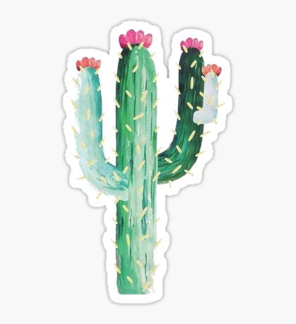 Photo of 'Arizona Cactus State' Sticker by baileymincer
