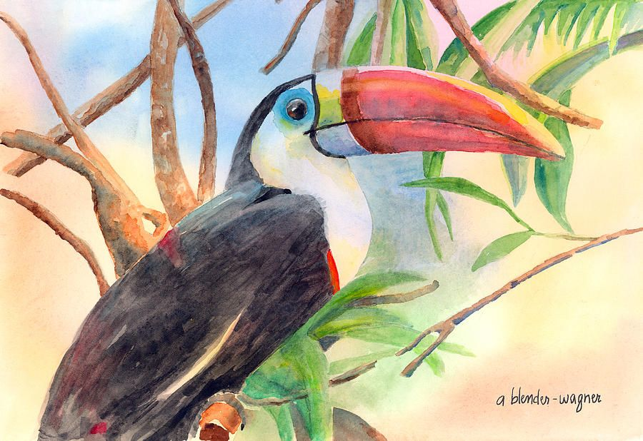 Red-billed Toucan Painting by Arline Wagner - Red-billed Toucan Fine Art Prints and Posters for Sale
