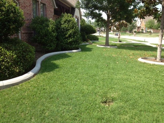 Groundscape, a Fort Worth Landscape Company, installs concrete edging that is reinforced with rebar.