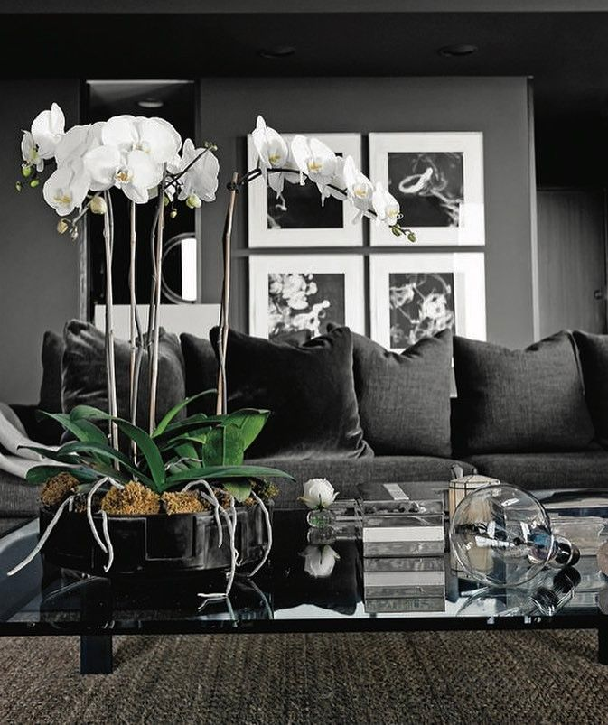 I M In The Mood For Some Dark Walls This Season Check Out My