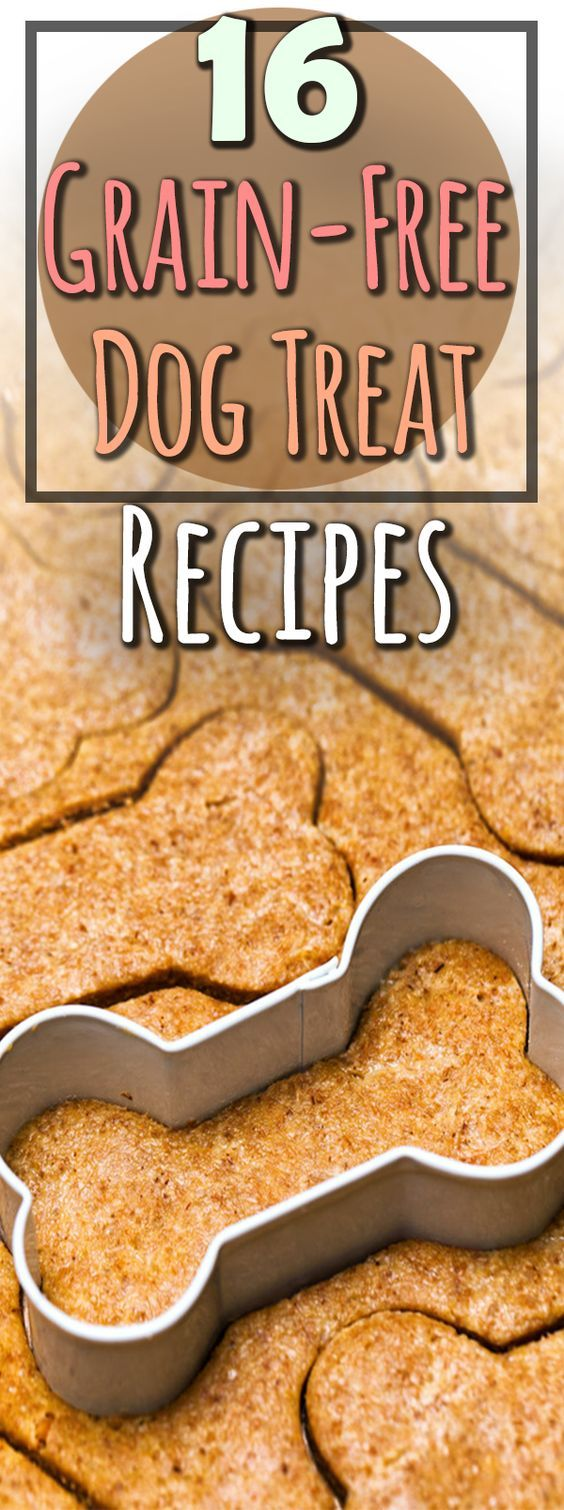 17 Homemade Grain-Free Dog Treat Recipes | PlayBarkRun ...