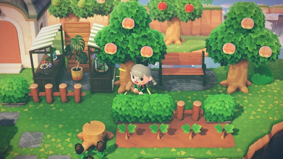 Made A Little Greenhouse Area Today Ac Newhorizons New Animal Crossing Animal Crossing Animal Crossing Game