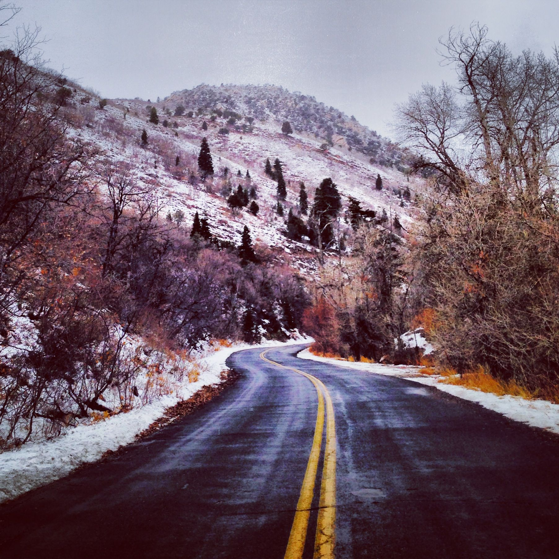 A Little Drive Through Emigration Canyon Nature Adventure Canyons Utah Best Places To Live