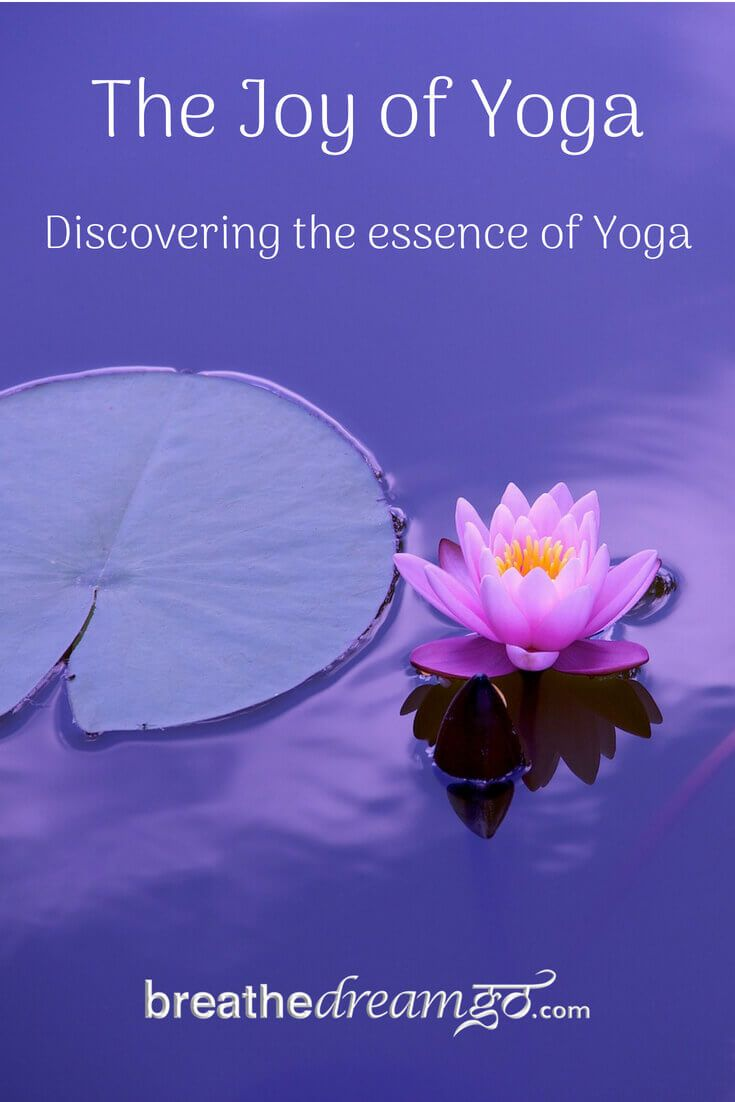 An Image Of A Lotus Flower In The Water For International Yoga Day