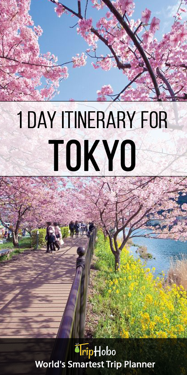 Tokyo 1 day Itinerary by TripHobo