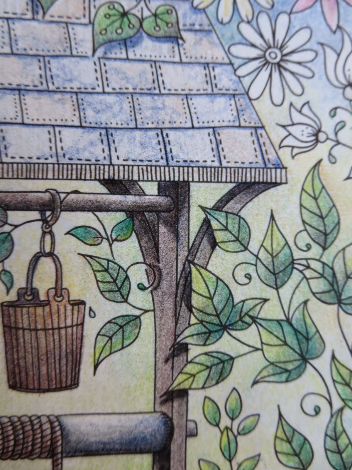 Passion For Pencils My Secret Garden Colouring Book The Well Part