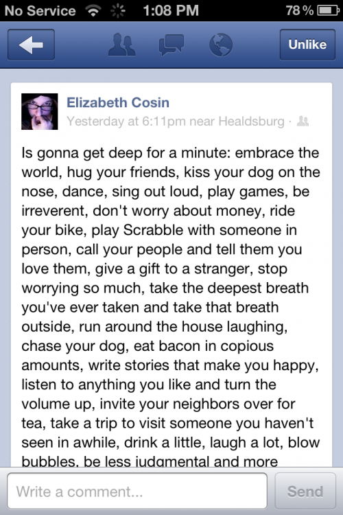 The Best Facebook Status Ever Elephant Journal