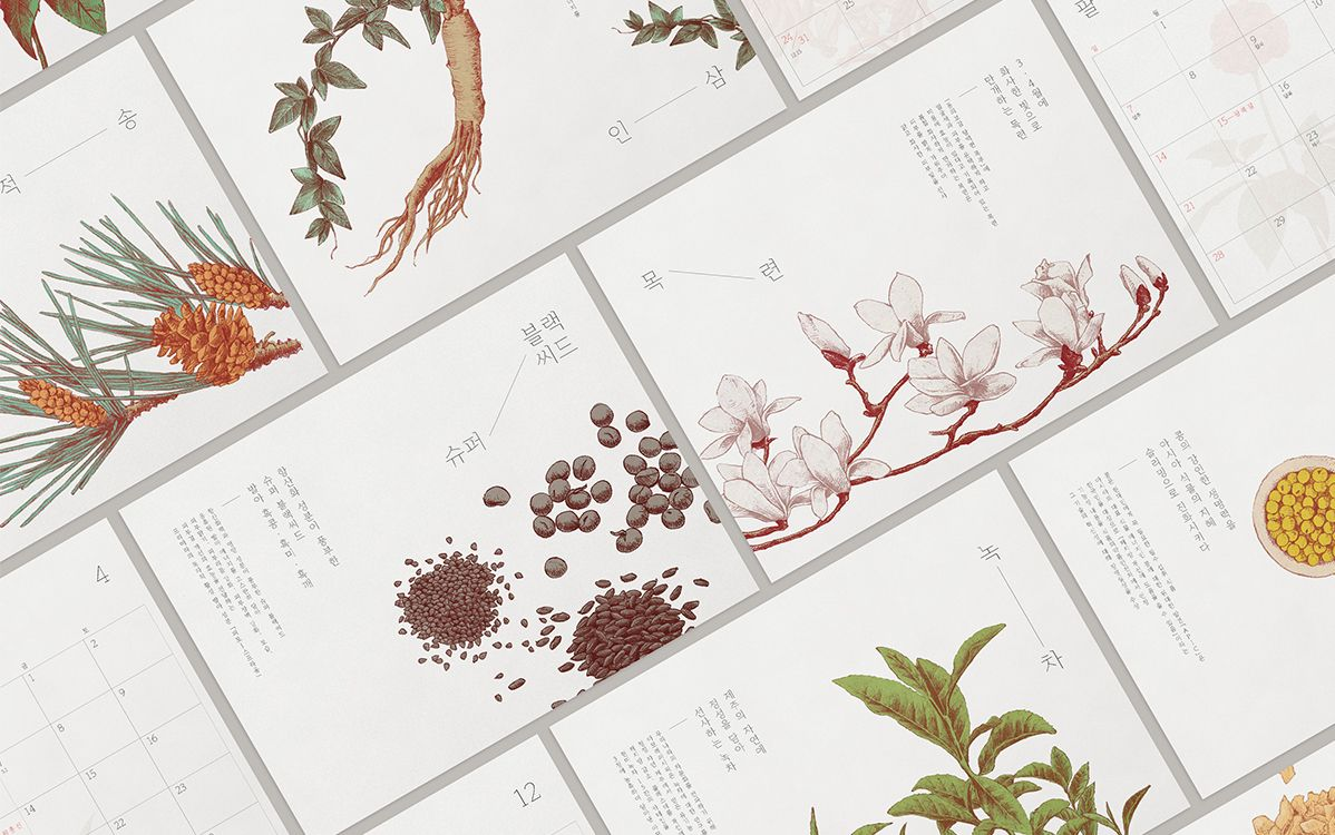 AMOREPACIFIC Calendar 2016 / Editorial, Illustration on Behance