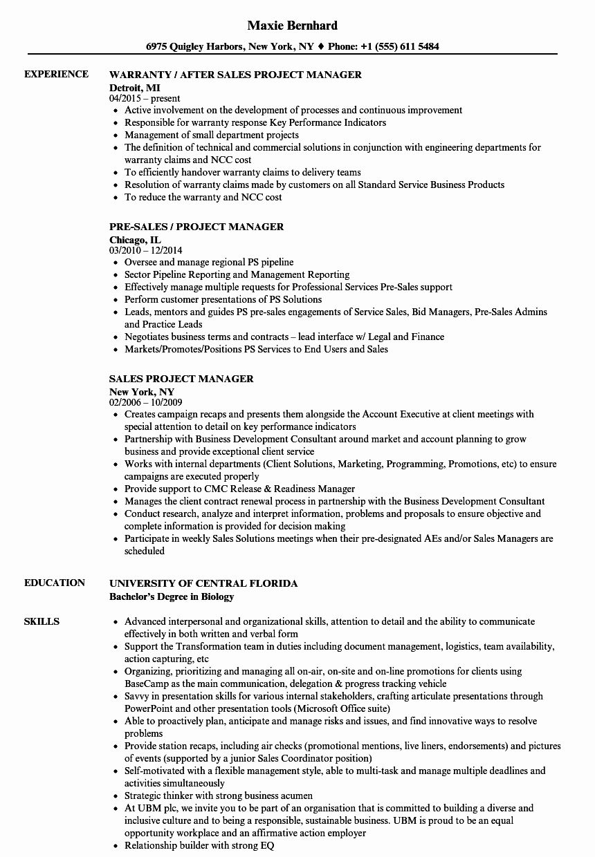 It Project Manager Resume Examples Awesome Sales Project
