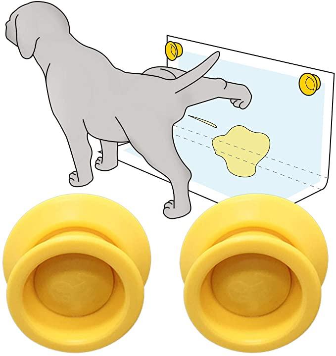 Pin On Pet Needs