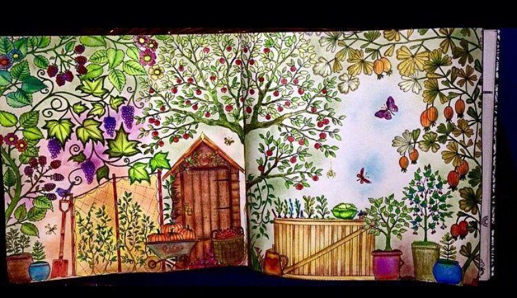 Double Page Pumpkin Secret Garden Folha Dupla Abobora Johanna Basford