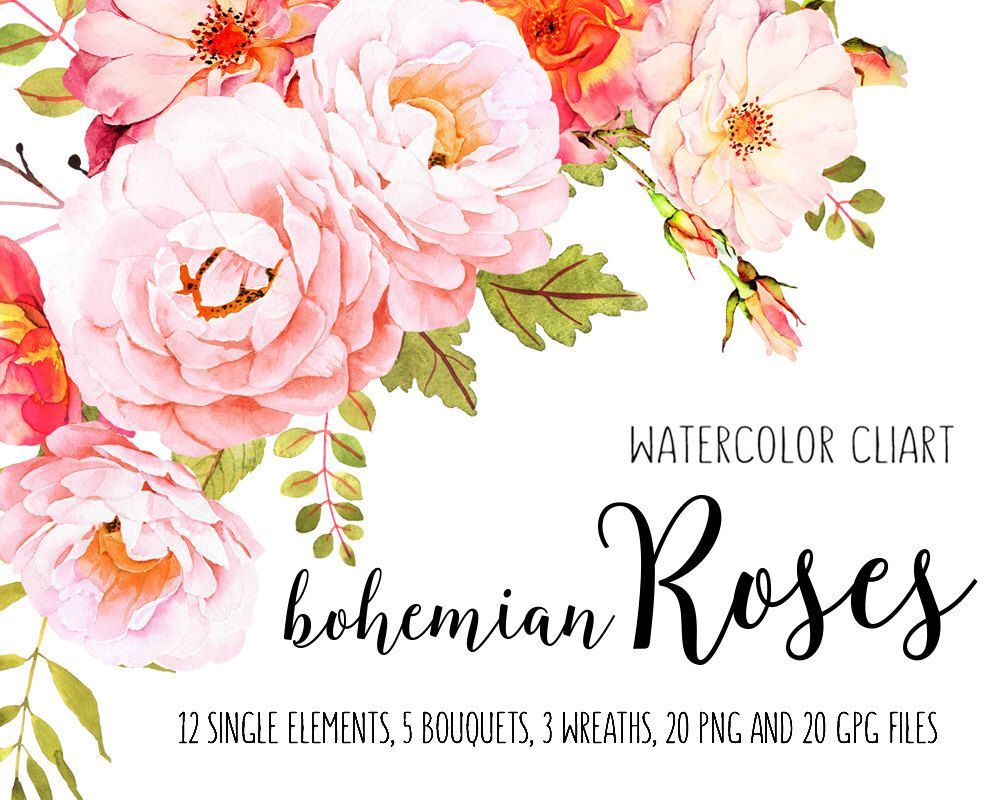 Roses watercolor clip art, Flower clipart, Watercolor bundle, Roses ...
