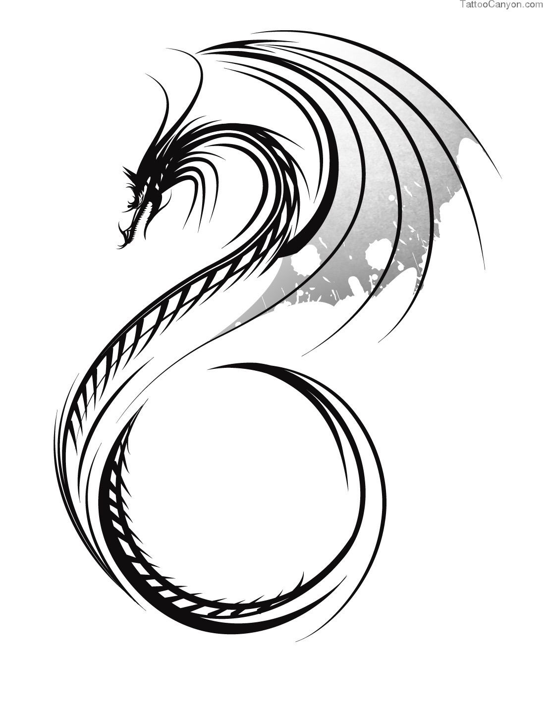 Simple Dragon Tattoo Google Pretraga Dragon Drawing Pinterest